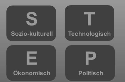 STEP-Analyse